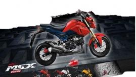 Xe khỉ Honda MSX 125cc thêm tông mầu vui nhộn mới